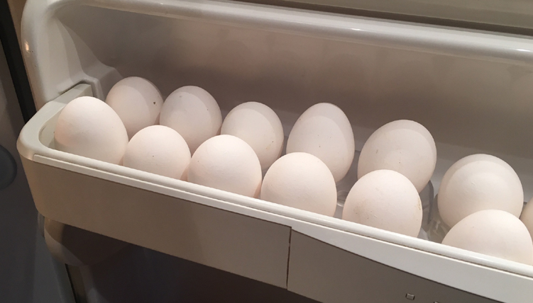 eggs in fridge